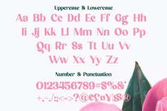 Mel Pooly - Modern Chic Typeface Product Image 4