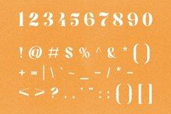 Lower Coast | Serif Display Product Image 6