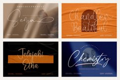 Spectacular All Collection Mega Font Bundle Handwritten Product Image 6