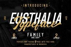 Eusthalia Font Family Product Image 1