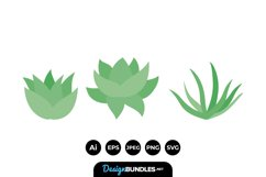 Succulent Illustrations Product Image 1