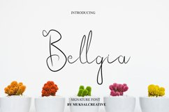 Bellgia Product Image 1