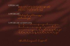 Lavitanie Monoline Script Font Product Image 8