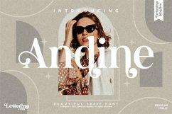 Andine - Beautiful Serif Font Product Image 1