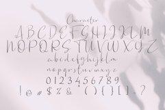 Web Font Barsel Product Image 3