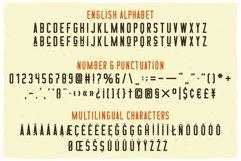 16 Font Families Bundle Product Image 2