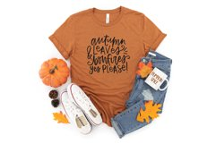 Fall Phrases - SVG and Symbols Font Product Image 5