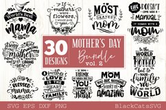 Mother's Day SVG bundle 30 designs Mother's Day SVG vol 2 Product Image 1
