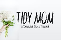 Tidy Mom Product Image 1