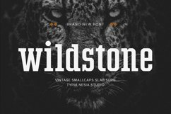 Wildstone Product Image 4