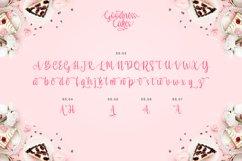 Web Font - Goodness Cakes Product Image 5