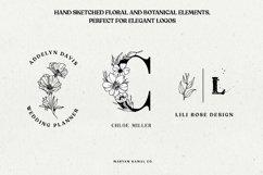 Wild Blossom - Hand sketched Floral & Botanical elements Product Image 2