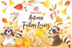 Autumn falling leaves Product Image 1