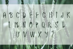 LEAFY VALLEY - Hand-drawn Font DUO Product Image 4