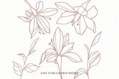 Lily svg bundle, Spring svg files for cricut, Plants svg Product Image 2