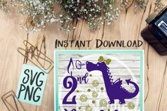 2nd Birthday Girl Dragon SVG PNG Cricut Cameo Silhouette Brother Scan & Cut Crafters Cutting Files for Vinyl Cutting Sign Making Product Image 1