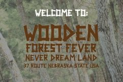 Web Font Woodpecker Typeface Product Image 5
