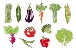 Collection of hand-drawn vegetables Product Image 3