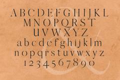 QUEEN, An Elegant Serif Font Product Image 4