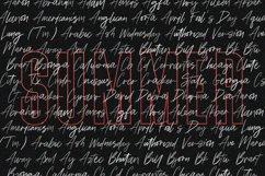 Triester SVG Brush Font Free Sans Product Image 6
