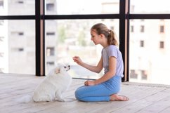 Cute teenage girl training her spitz dog at home Product Image 9