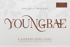 Youngbae Product Image 1