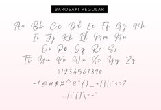Barosaki Script Product Image 6