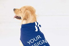 Dog Hoodie Mock Ups - 2|Png&Psd|1080x1458px Product Image 3