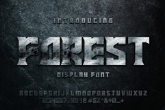 FOREST display font Product Image 1