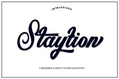 Staytion Product Image 1