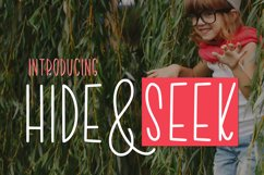 Hide & Seek Product Image 1