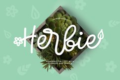 Web Font Herbie - A Flowery Font Product Image 1