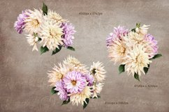 Dahlias clipart. Bouquets of white and purple flowers. Product Image 3