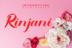 Rinjani Product Image 3