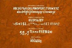 Web Font Ecanthe - A Modern Brush Font Product Image 6