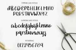 Beautiful Signature   A Script Typeface Product Image 2