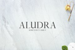Aludra Serif 12 Font Family Pack Product Image 1