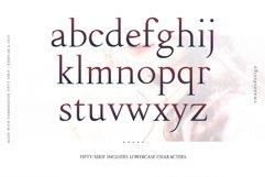 Fipty Serif Font Family Product Image 3