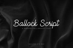 Ballock Script - a modern calligraphy font Product Image 1