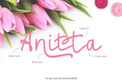 Anitta Script Font Product Image 1