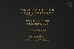 Alchemion Display Serif Font Product Image 3