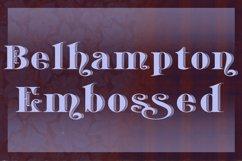 Belhampton Embossed Product Image 2
