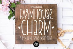 BIG FARMHOUSE FONT BUNDLE - Dixie Type Co. Product Image 18