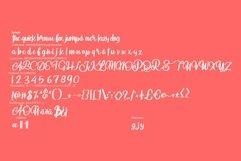 Aniabellia   Beauty Script Typeface Product Image 6