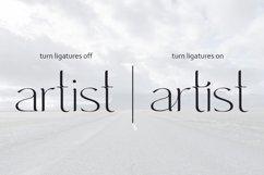 Immensity - ligature serif font family Product Image 3
