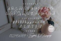 Rhesmanisa Script Font Product Image 9