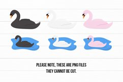 Cute Swans PNG Clipart Set - Swan Clipart Product Image 2
