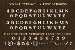 Forest - Display Font Product Image 4