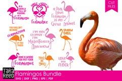 Flamingo Bundle Product Image 1