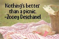 Picnic Basket - A Delicious Outdoors Font Product Image 6